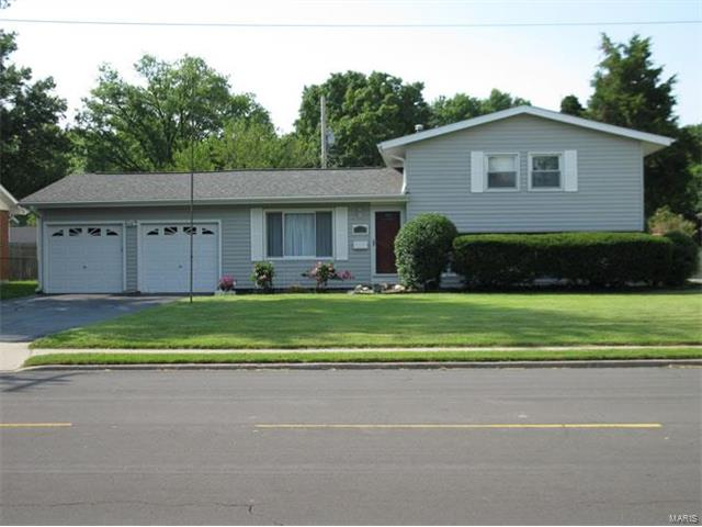 2138 Johnson, Granite City, IL - USA (photo 3)