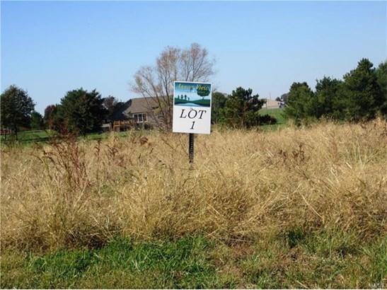 3401 Arbor View Court, Freeburg, IL - USA (photo 2)