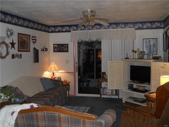 135 Lake Vista Drive, Carlyle, IL - USA (photo 4)