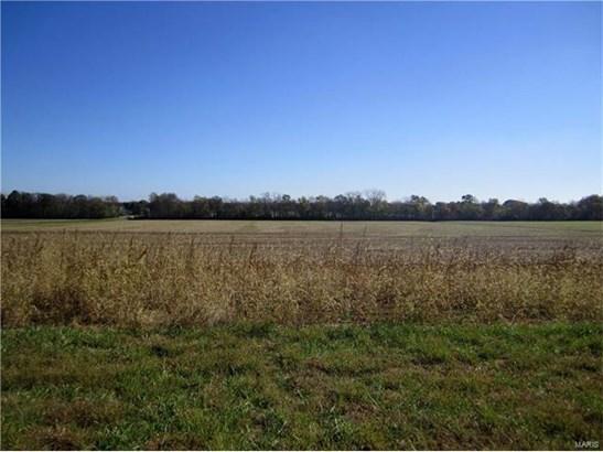 3444 Arbor View Court, Freeburg, IL - USA (photo 4)