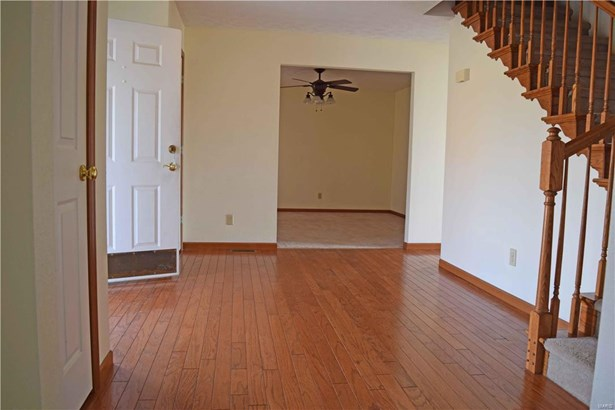 234 Summers Trace, Belleville, IL - USA (photo 3)
