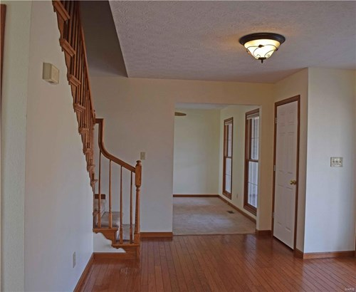 234 Summers Trace, Belleville, IL - USA (photo 4)