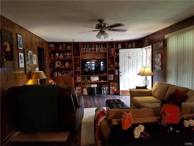 8333 Huey Road, Centralia, IL - USA (photo 4)