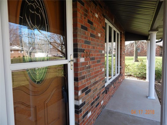 204 Clarence Drive, Red Bud, IL - USA (photo 2)