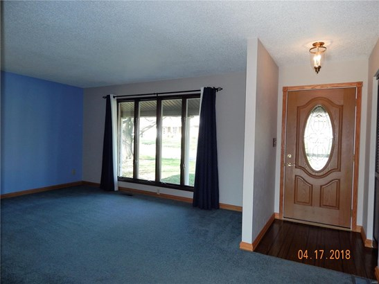 204 Clarence Drive, Red Bud, IL - USA (photo 3)