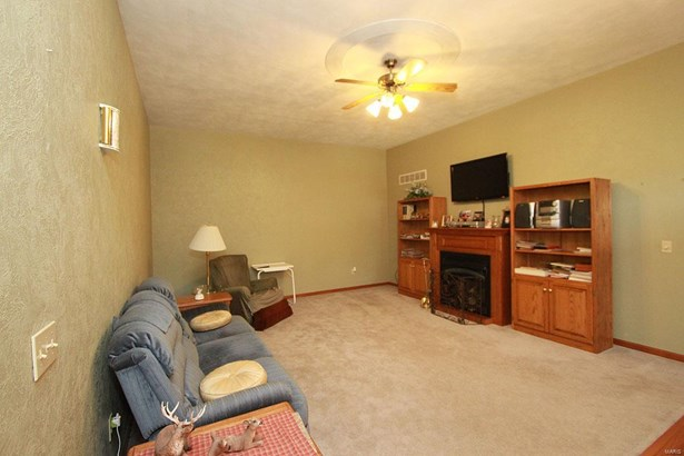 1306 North Staude Street, Okawville, IL - USA (photo 4)