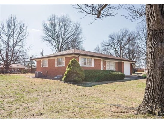 424 Springdale Drive, Belleville, IL - USA (photo 2)