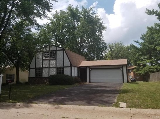 225 Country Meadow Lane, Belleville, IL - USA (photo 1)