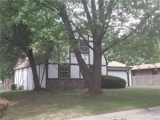 225 Country Meadow Lane, Belleville, IL - USA (photo 2)