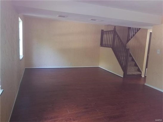 225 Country Meadow Lane, Belleville, IL - USA (photo 5)