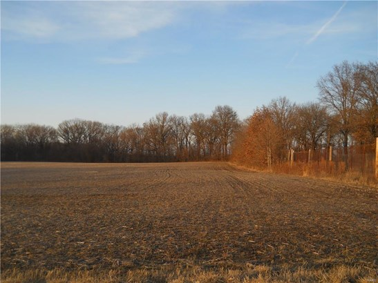 24101 Brink Road, Carlyle, IL - USA (photo 3)