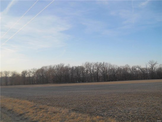 24101 Brink Road, Carlyle, IL - USA (photo 5)