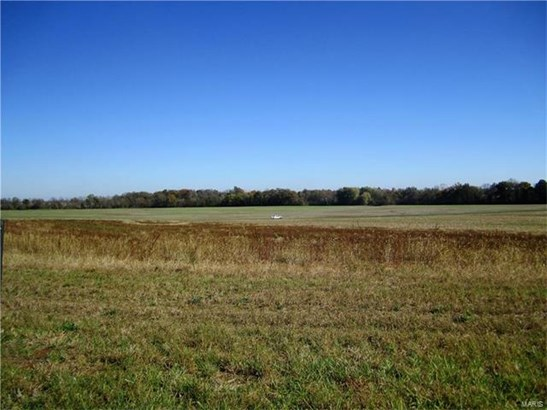 3438 Arbor View Court, Freeburg, IL - USA (photo 2)