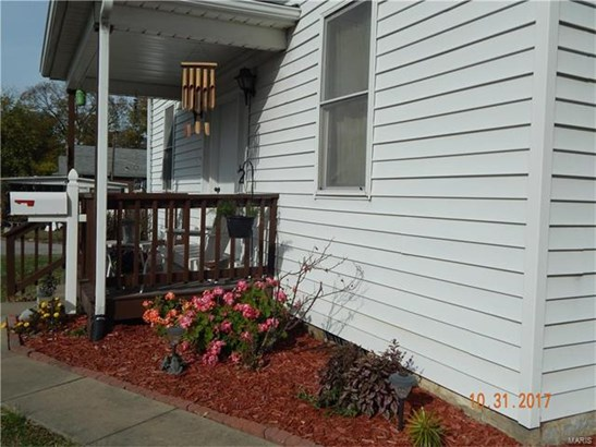 503 East Olive Street, Red Bud, IL - USA (photo 3)