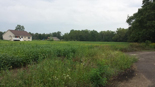 Lot - Middleville, MI (photo 3)