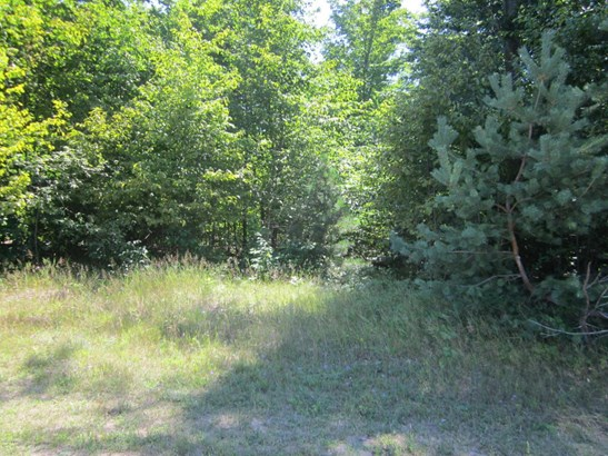 Acreage - Manistee, MI (photo 2)