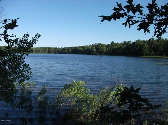 Acreage - Twin Lake, MI (photo 2)