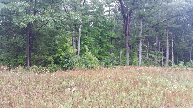 Commercial Land - North Muskegon, MI (photo 1)