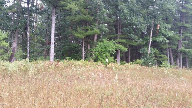 Commercial Land - North Muskegon, MI (photo 2)