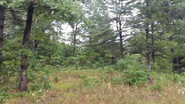 Commercial Land - North Muskegon, MI (photo 4)
