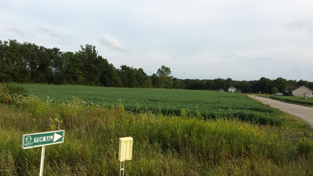 Lot - Middleville, MI (photo 4)