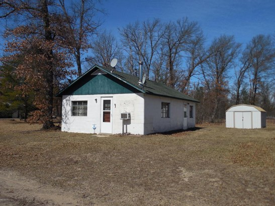 Single Family Residence, Other - Irons, MI (photo 1)