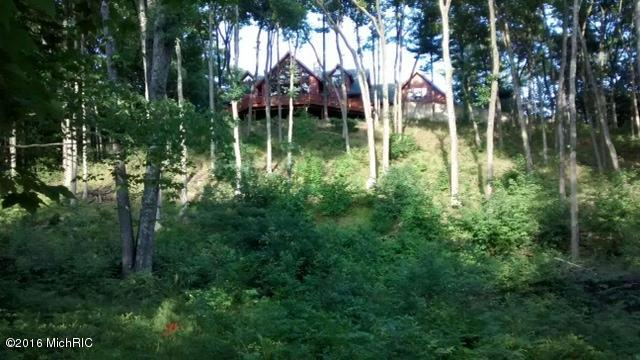 Single Family Residence, Other - Whitehall, MI (photo 4)