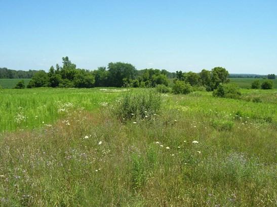 Acreage - Grant, MI (photo 2)