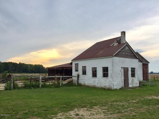 Farm House, Single Family Residence - Allegan, MI (photo 5)