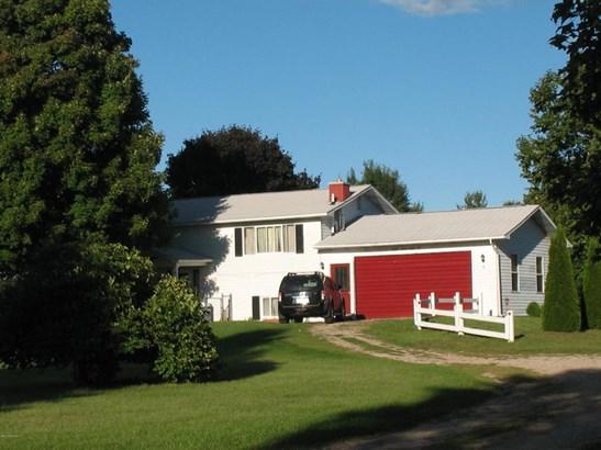 Single Family Residence, Ranch - Edmore, MI (photo 1)