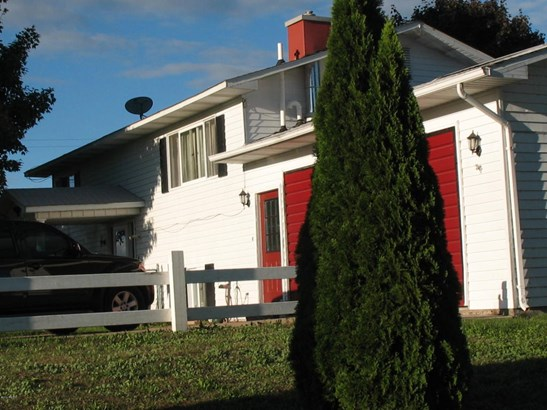 Single Family Residence, Ranch - Edmore, MI (photo 2)