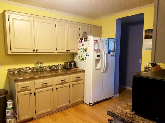 Single Family Residence, Ranch - Saranac, MI (photo 3)