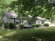 Single Family Residence, Ranch - Branch, MI (photo 1)