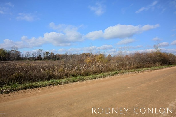 Acreage - Wayland, MI (photo 1)