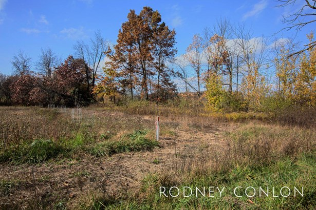 Acreage - Wayland, MI (photo 5)