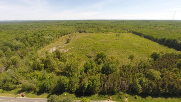 Acreage - Free Soil, MI (photo 2)
