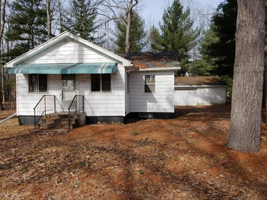 Cabin/Cottage, Single Family Residence - Bitely, MI (photo 1)