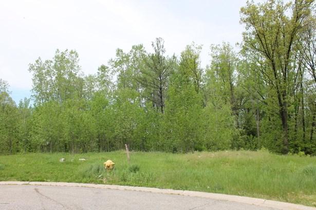 Lot - Grand Rapids, MI (photo 4)