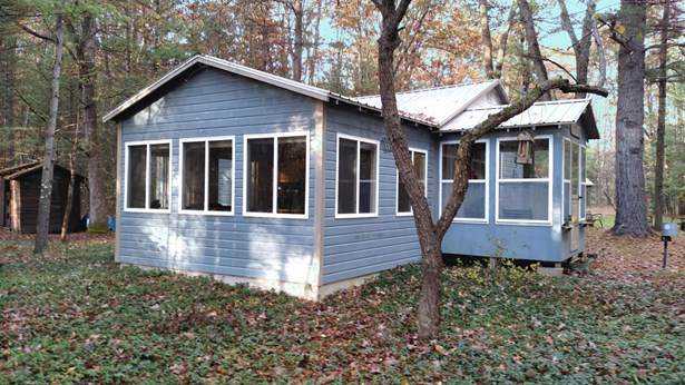 Cabin/Cottage, Single Family Residence - Irons, MI (photo 2)