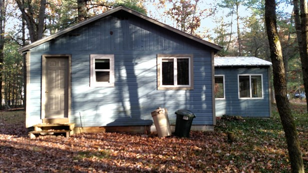 Cabin/Cottage, Single Family Residence - Irons, MI (photo 3)