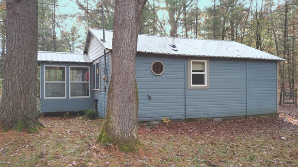 Cabin/Cottage, Single Family Residence - Irons, MI (photo 4)