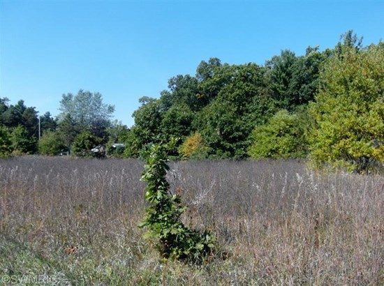 Commercial Land - Muskegon, MI (photo 1)