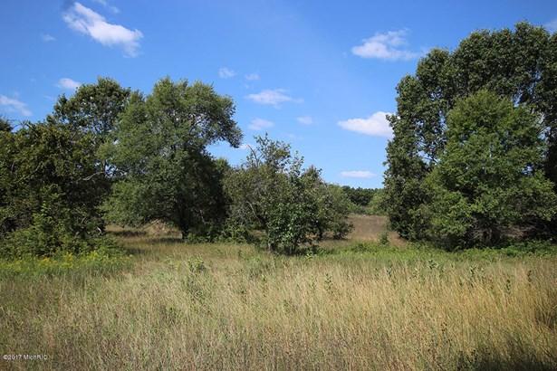 Acreage - Hesperia, MI (photo 3)