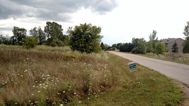 Lot - Muir, MI (photo 3)