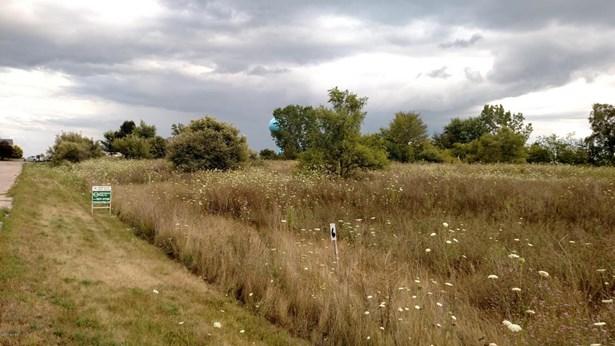 Lot - Muir, MI (photo 4)