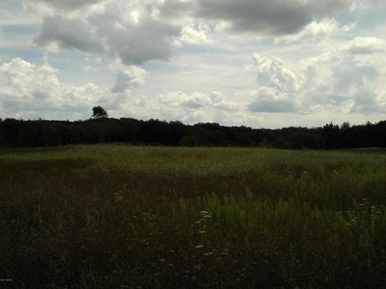 Acreage - Reed City, MI (photo 4)