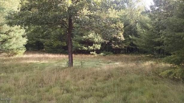 Lot - Free Soil, MI (photo 3)