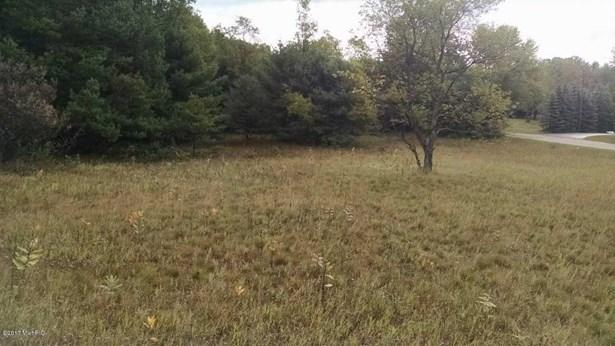 Lot - Free Soil, MI (photo 4)