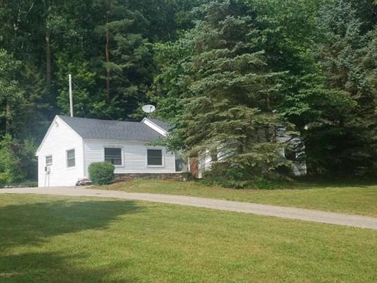 Single Family Residence, Ranch - Saranac, MI (photo 2)