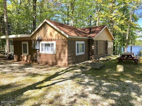 Cabin/Cottage, Single Family Residence - Fountain, MI (photo 3)